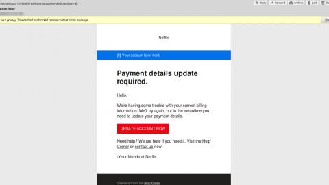 Phishing Email Increase Beware (netflix Sample)